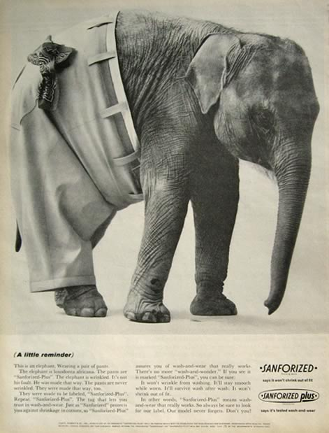 1963 Sanforized Plus Ad ~ Elephant Wearing Pants Photo