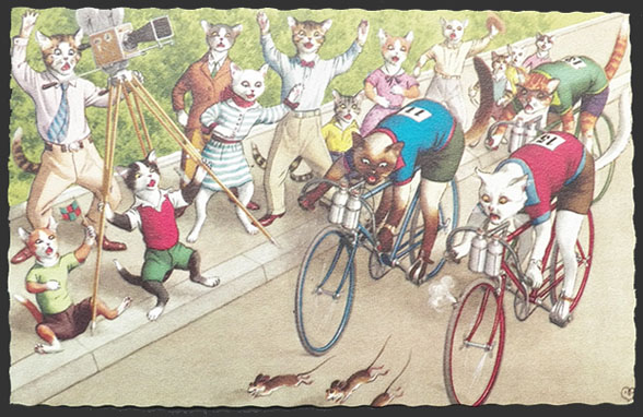 alfred mainzer dressed cats postcard bicycle bike race old postcards amp trade cards