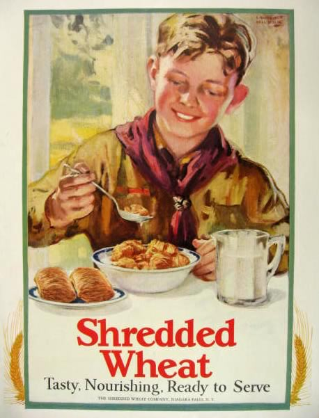 1927 Shredded Wheat Cereal Ad ~ Lawrence Wilbur ~ Boy Scout