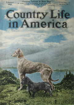 country_life_cover_dogs