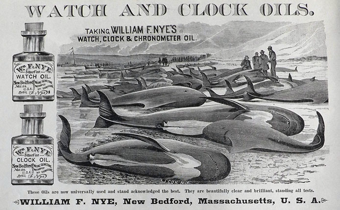 1886 William Nye Watch & Clock Oil Ad ~ Whales