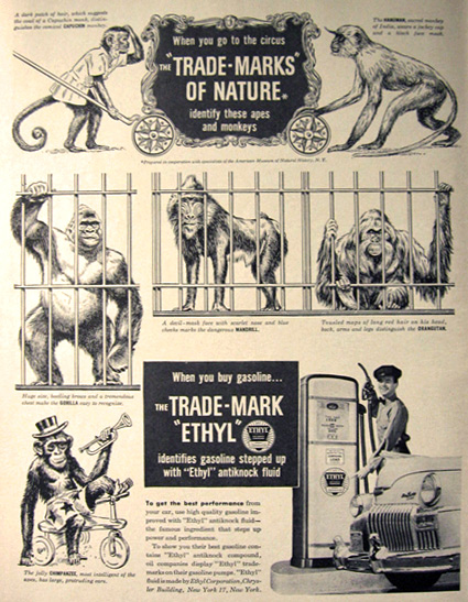 1948 Ethyl Gasoline Ad ~ Circus Monkeys