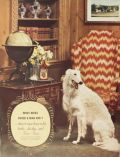 1938 Four Roses Bourbon Ad ~ Borzoi Dog