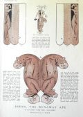 1914 Children's Cut-Outs ~ Simon the Runaway Ape