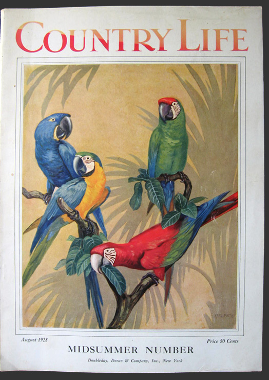 1928 Country Life Magazine Cover ~ Macaws, Karl Plath