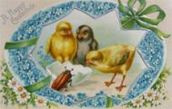 Happy Eastertide Chicks with Beetle Postcard