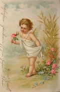 Young Angel with Roses Vintage Foreign Postcard
